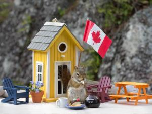 A very Canadian vision by Nancy Rose